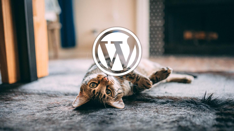 WordPressにログインできない!【解決法の紹介】