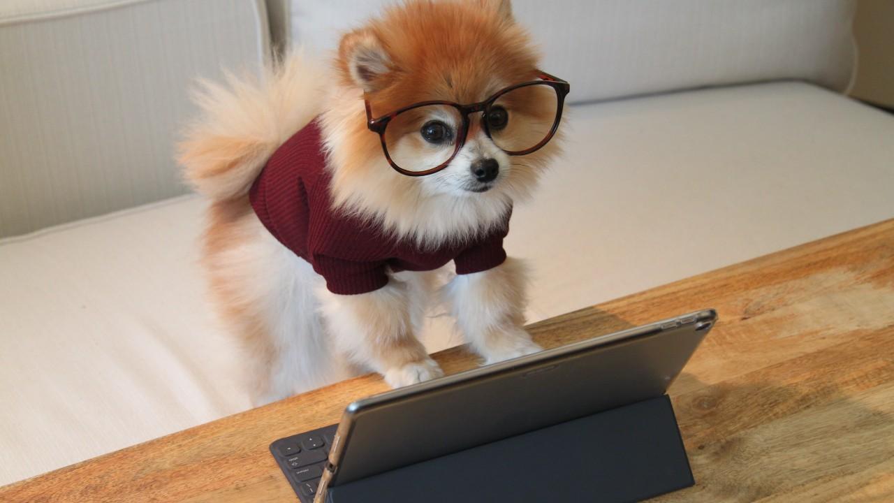 functions.phpの編集方法と注意点 – WordPress