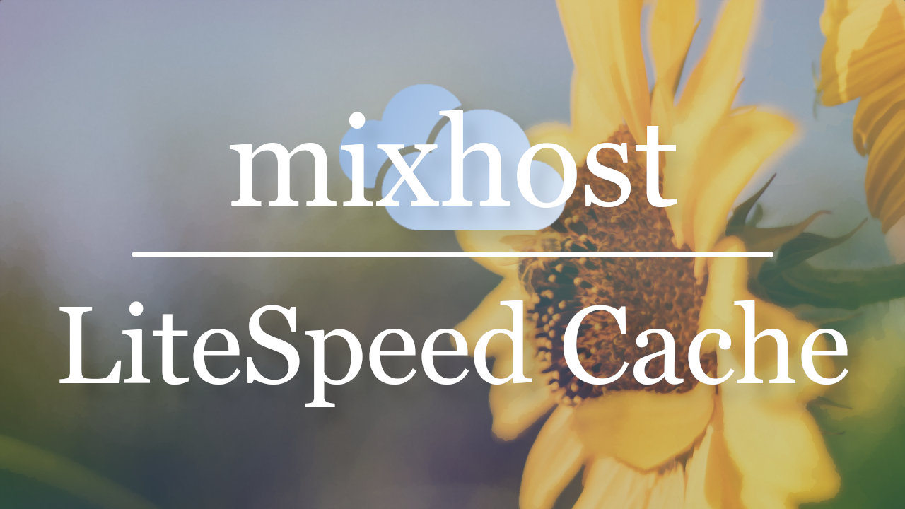 mixhostを使うならLiteSpeed Cacheで超高速にしよう!